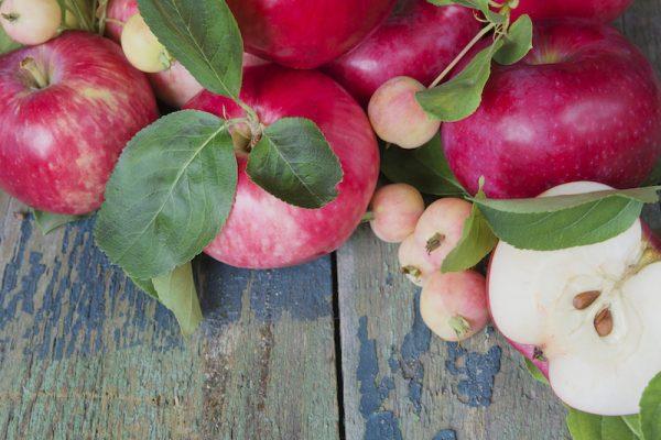 Äpfel sind saisonale Nährstoffbomben.