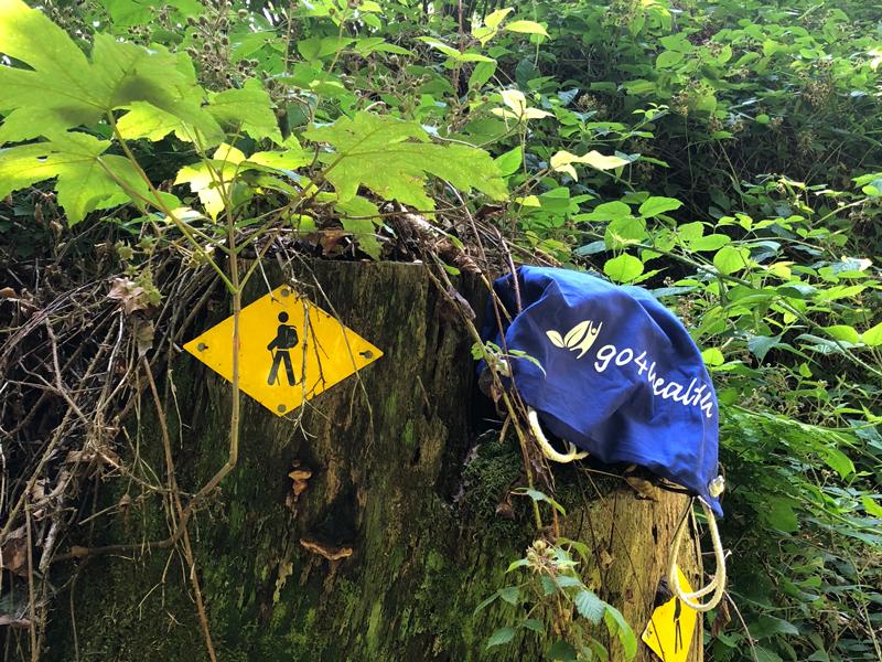 Ab in den Wald: Ein guter Tipp gegen Hitze.