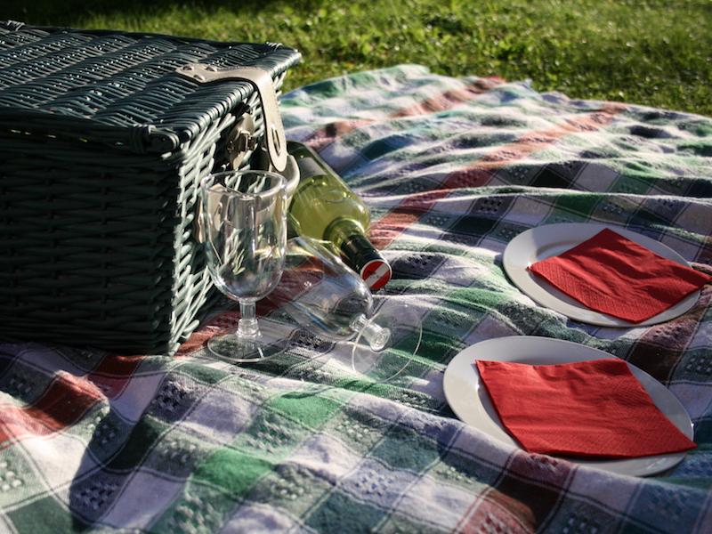 Dein gesundes go4health Picknick