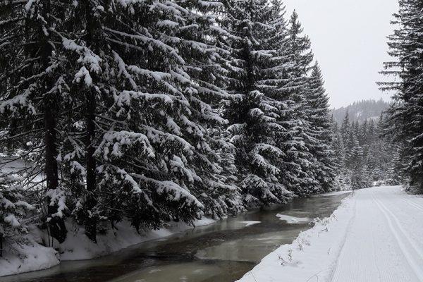 Winter Wonderland: perfekt für gesunde Bewegung wie Langlaufen