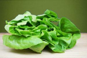 Ausgewogene Ernährung von A bis Z: H wie Häuptelsalat