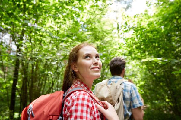Kraft schöpfen in der Natur mit Waldbaden.