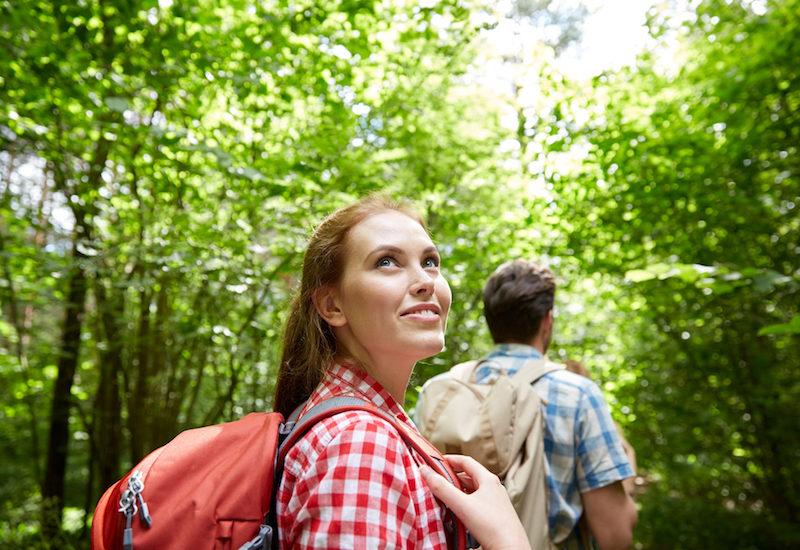 Stress abbauen durch Waldbaden