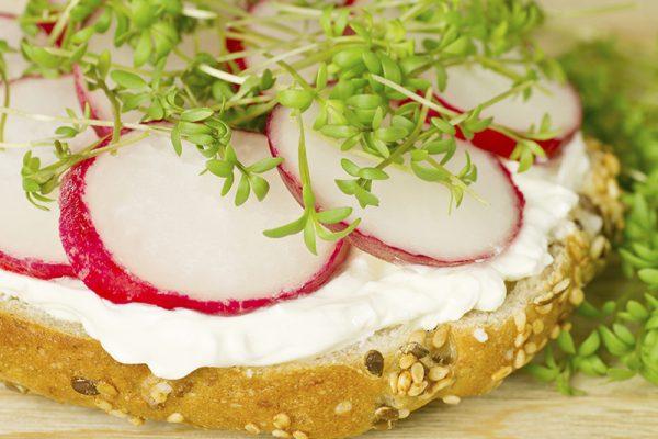 go4health Snacktipp: Power-Sandwich für zwischendurch